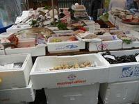 Fishmonger, Jon Norris (8)