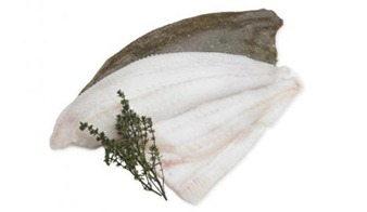 Brill (Filleted)